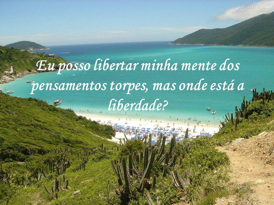 Texto: Luiz Gonzaga da Silva Site: www.respingosdeorvalho.hpgvip.com.br