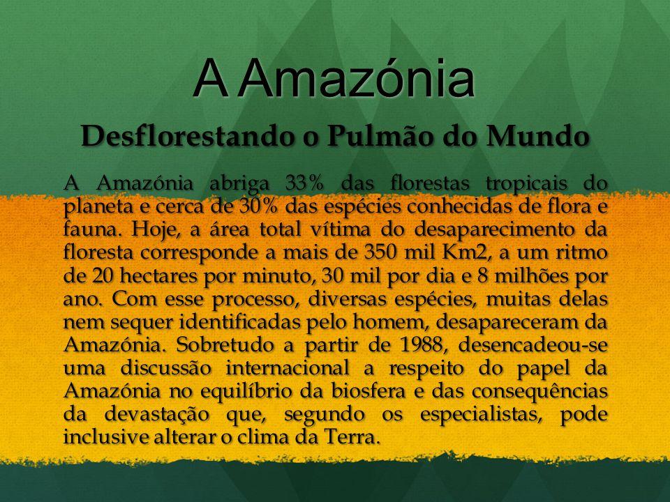 Desflorestando o Pulmão do Mundo A Amazónia abriga 33% das florestas tropicais do planeta e cerca de 30% das espécies conhecidas de flora e fauna. Hoj