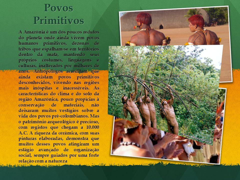 Povos Primitivos A Amazónia é um dos poucos redutos do planeta onde ainda vivem povos humanos primitivos, dezenas de tribos que espalham-se em territó