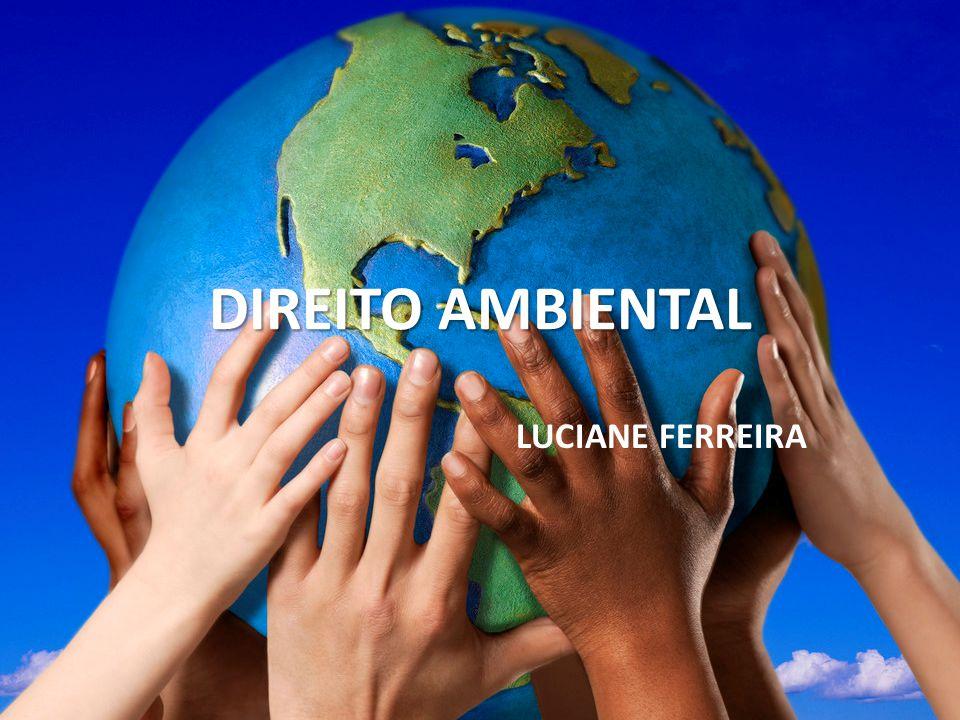 Princípios do Direito Ambiental Proporcionar para as presentes e futuras gerações, as garantias de preservação da qualidade de vida, em qualquer forma que esta se apresente, conciliando elementos econômicos e sociais, isto é, crescendo de acordo com a idéia de desenvolvimento sustentável.