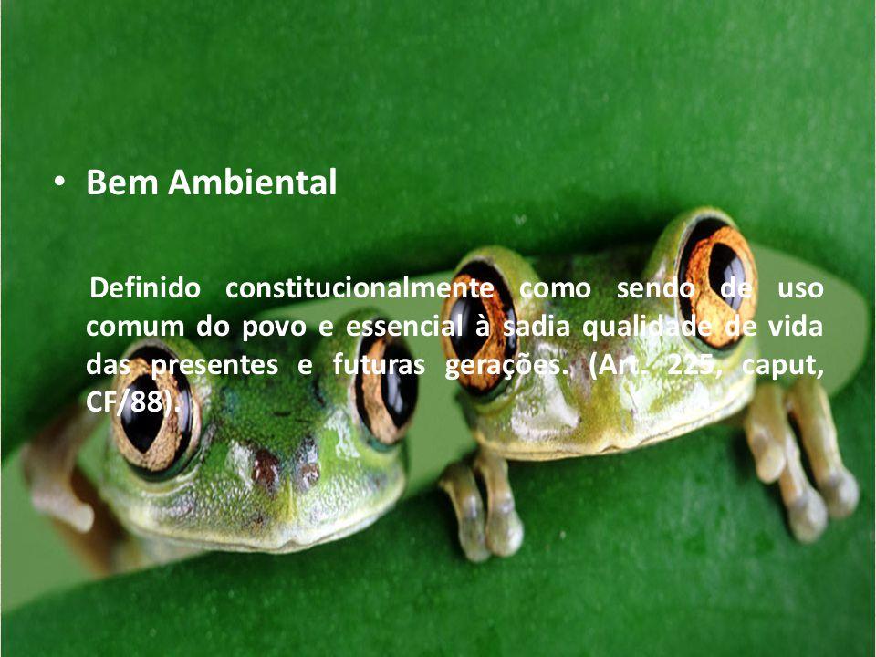 • Bem Ambiental Definido constitucionalmente como sendo de uso comum do povo e essencial à sadia qualidade de vida das presentes e futuras gerações. (