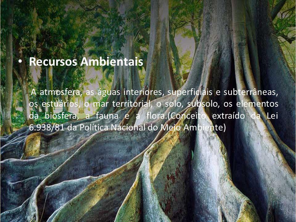 • Recursos Ambientais A atmosfera, as águas interiores, superficiais e subterrâneas, os estuários, o mar territorial, o solo, subsolo, os elementos da