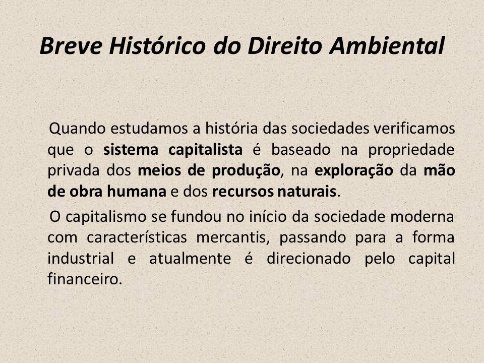 Breve Histórico do Direito Ambiental Quando estudamos a história das sociedades verificamos que o sistema capitalista é baseado na propriedade privada
