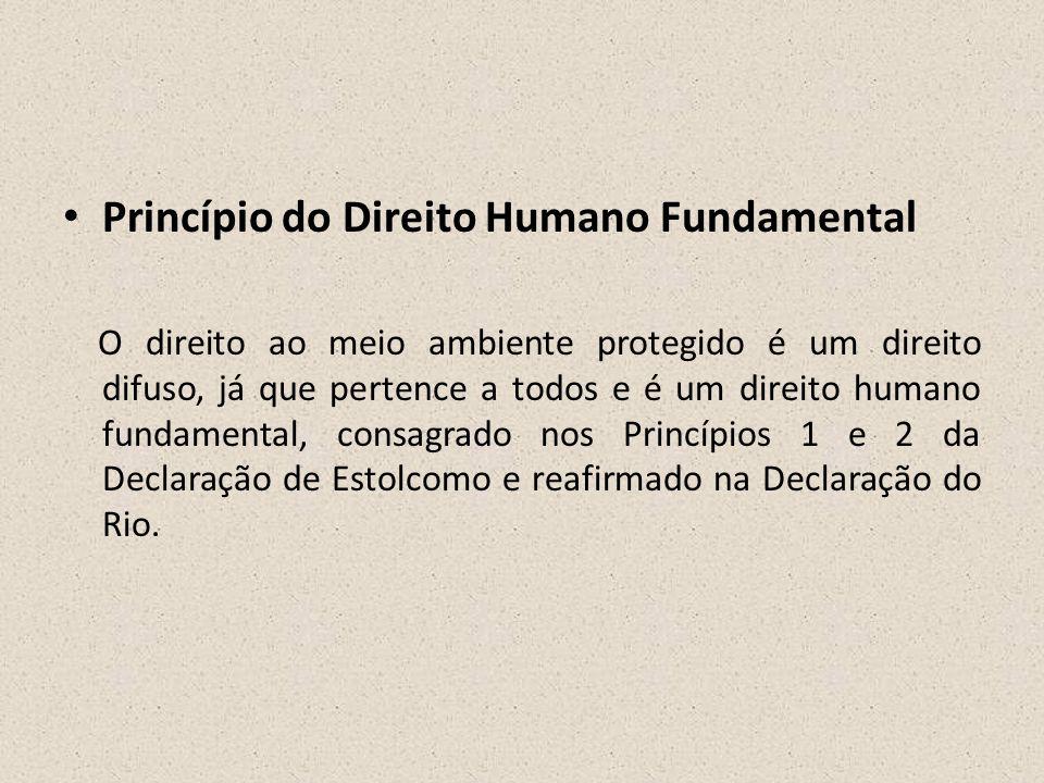 • Princípio do Direito Humano Fundamental O direito ao meio ambiente protegido é um direito difuso, já que pertence a todos e é um direito humano fund
