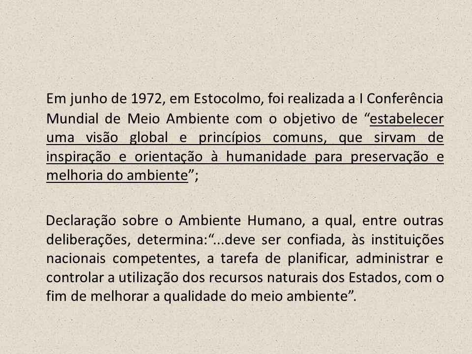 """Em junho de 1972, em Estocolmo, foi realizada a I Conferência Mundial de Meio Ambiente com o objetivo de """"estabelecer uma visão global e princípios co"""