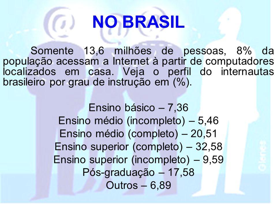 NO BRASIL Somente 13,6 milhões de pessoas, 8% da população acessam a Internet à partir de computadores localizados em casa. Veja o perfil do internaut