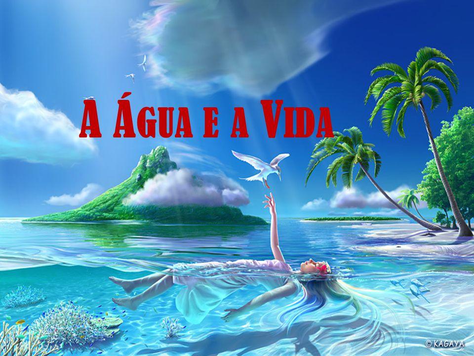 C URIOSIDADES O rio Amazonas concentra 1/5 de toda a água doce do planeta.