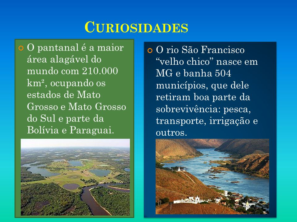 C URIOSIDADES O pantanal é a maior área alagável do mundo com 210.000 km², ocupando os estados de Mato Grosso e Mato Grosso do Sul e parte da Bolívia