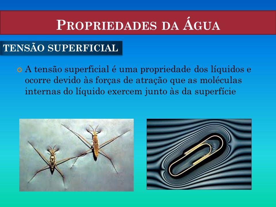 P ROPRIEDADES DA Á GUA A tensão superficial é uma propriedade dos líquidos e ocorre devido às forças de atração que as moléculas internas do líquido e