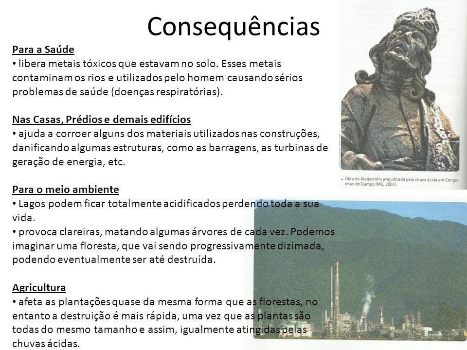 Consequências Para a Saúde • libera metais tóxicos que estavam no solo.