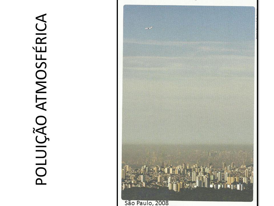 Poluição atmosférica: • Fontes estacionárias => indústrias e usinas termelétricas; • Fontes móveis => caminhões, ônibus e automóveis; • Grande problema de saúde pública; • Na zona rural => queimadas (canaviais e áreas nativas).