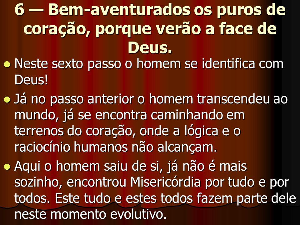 6 — Bem-aventurados os puros de coração, porque verão a face de Deus.  Neste sexto passo o homem se identifica com Deus!  Já no passo anterior o hom