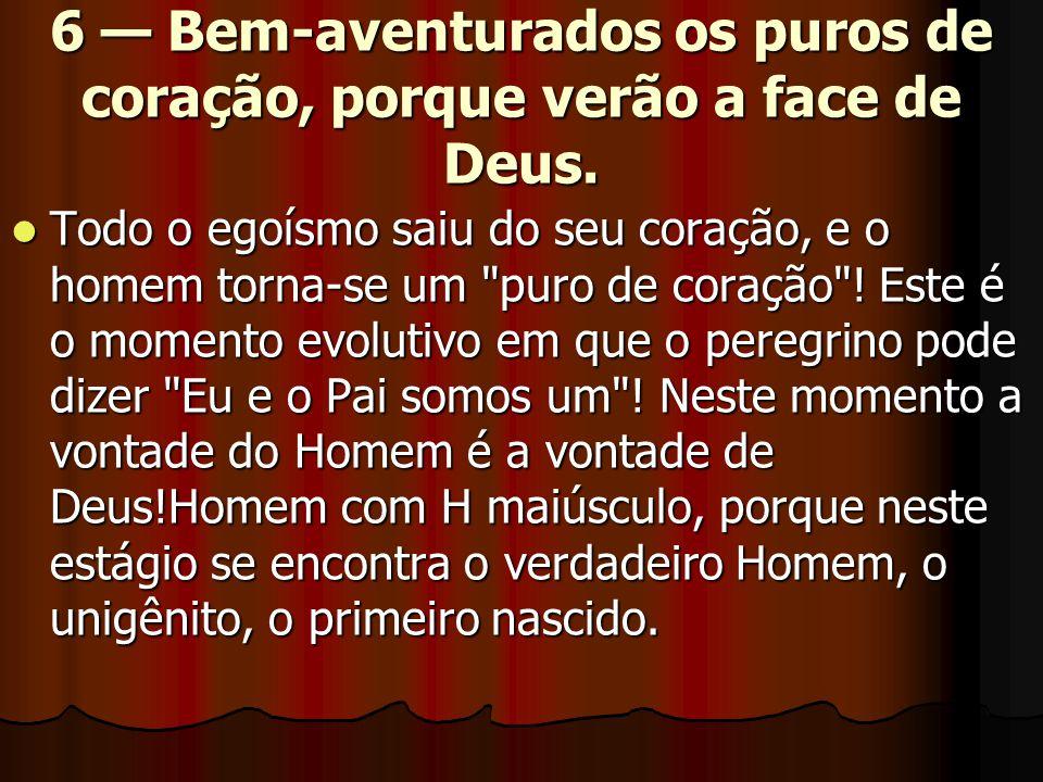 6 — Bem-aventurados os puros de coração, porque verão a face de Deus.  Todo o egoísmo saiu do seu coração, e o homem torna-se um