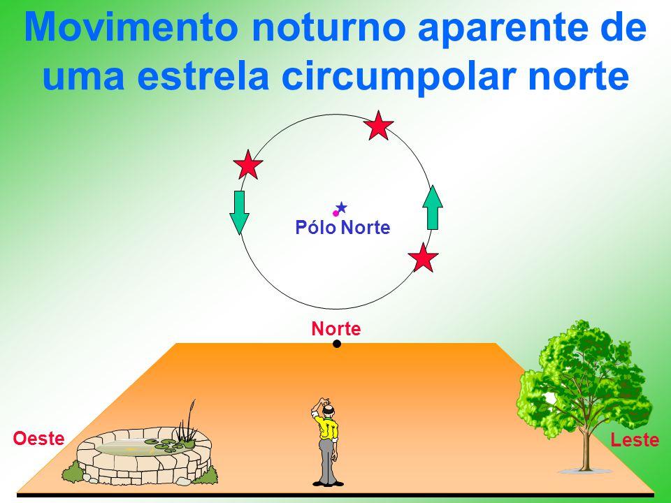 Movimento noturno aparente de uma estrela circumpolar norte Norte Leste Oeste Pólo Norte