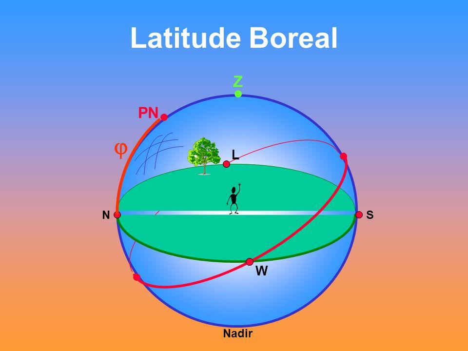 Latitude Boreal Z PN  Nadir NS L W