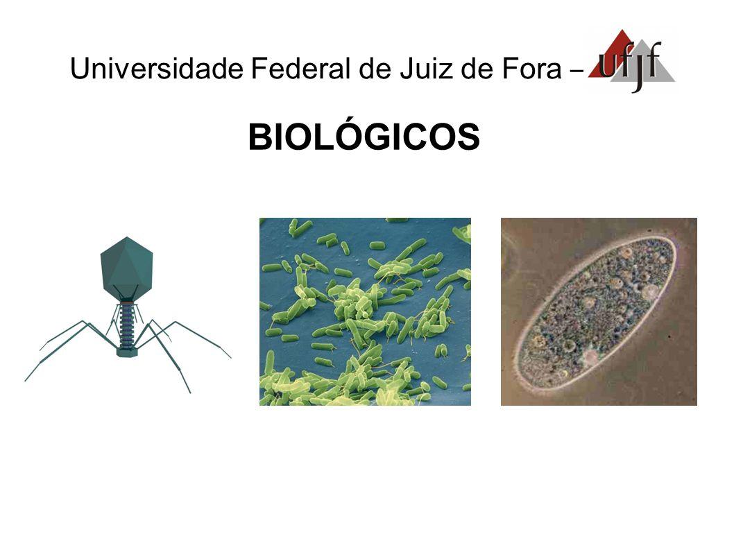 Universidade Federal de Juiz de Fora – AMBIENTAIS