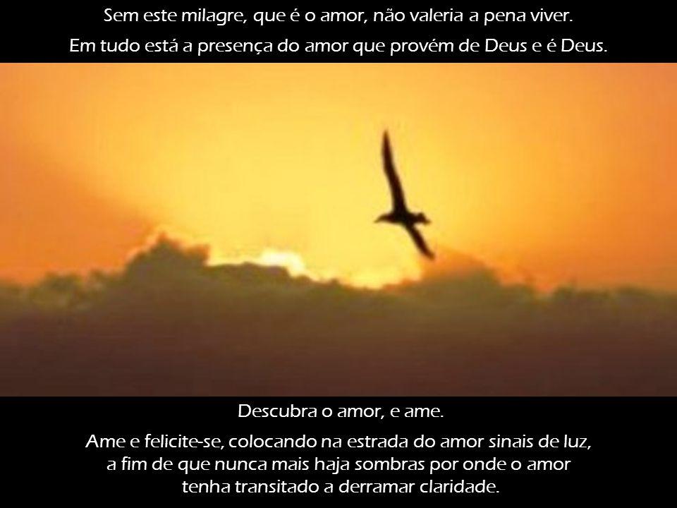 O amor é vida, sem o qual perderia o sentido e a significação. Quando se ama, a noite coroa-se de astros e o dia se veste de sorrisos. O amor colore a