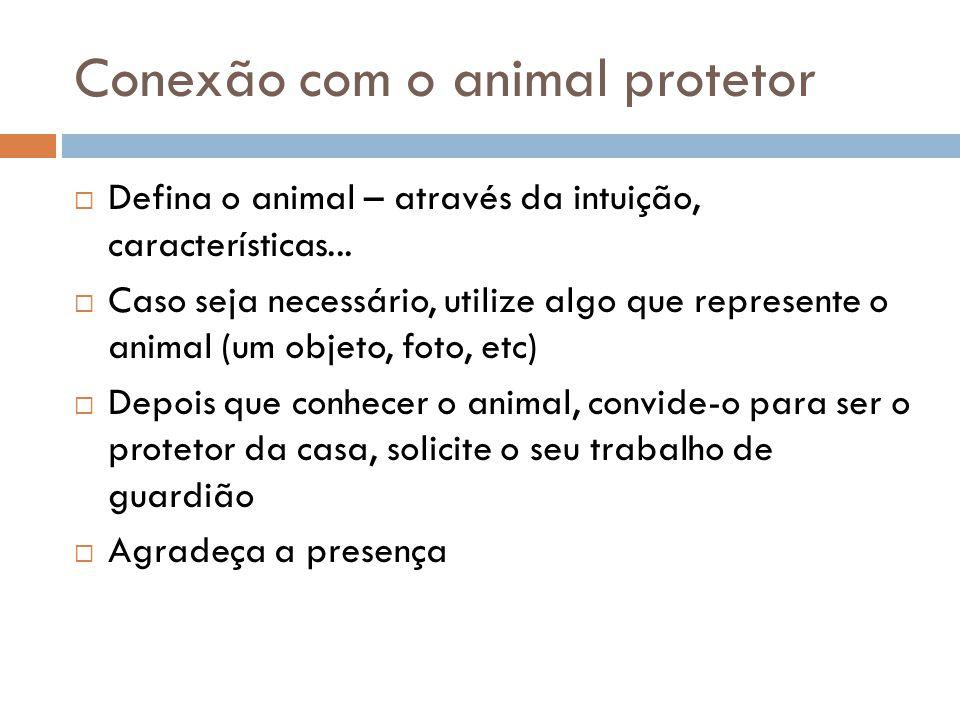 Conexão com o animal protetor  Defina o animal – através da intuição, características...  Caso seja necessário, utilize algo que represente o animal