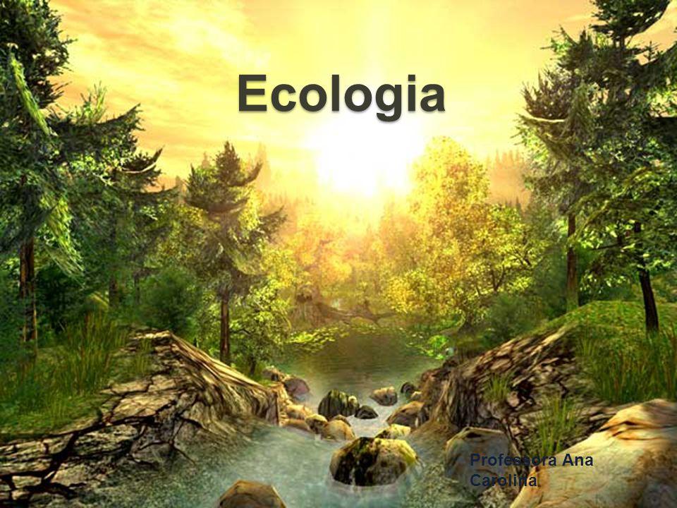 Ecologia Professora Ana Carolina