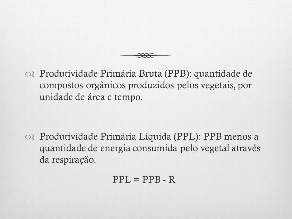  Produtividade Primária Bruta (PPB): quantidade de compostos orgânicos produzidos pelos vegetais, por unidade de área e tempo.  Produtividade Primár