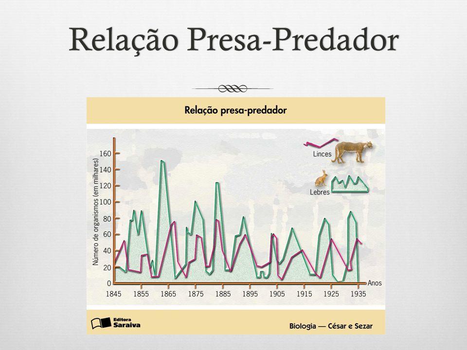 Relação Presa-PredadorRelação Presa-Predador