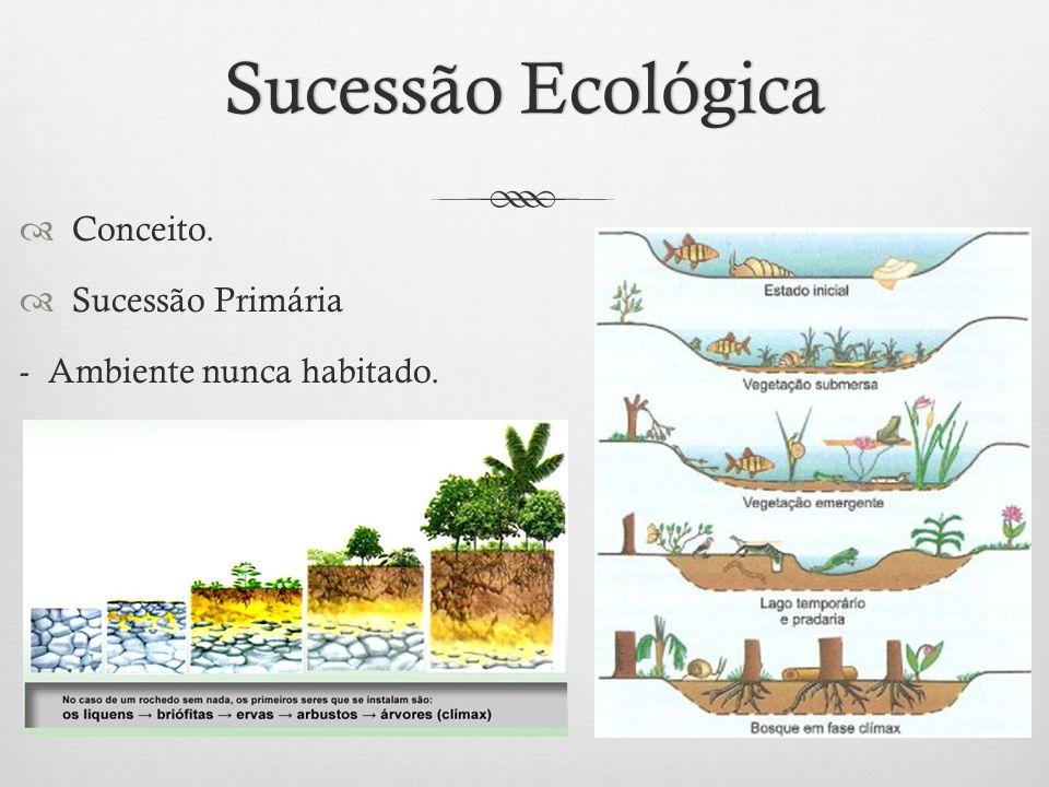 Sucessão EcológicaSucessão Ecológica  Conceito.  Sucessão Primária - Ambiente nunca habitado.