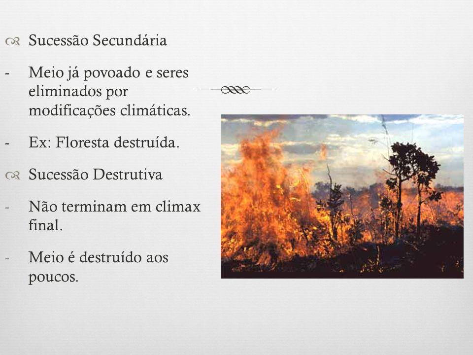  Sucessão Secundária -Meio já povoado e seres eliminados por modificações climáticas. - Ex: Floresta destruída.  Sucessão Destrutiva -Não terminam e