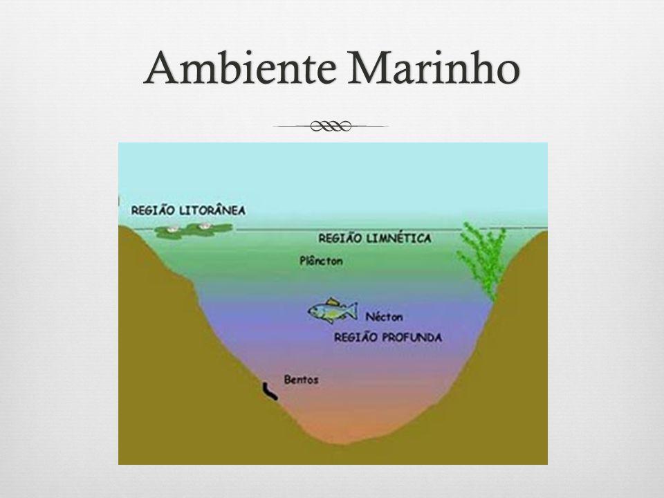 Ambiente MarinhoAmbiente Marinho