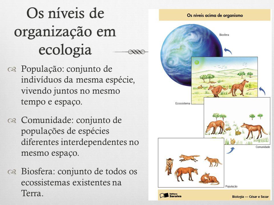 Os níveis de organização em ecologia  População: conjunto de indivíduos da mesma espécie, vivendo juntos no mesmo tempo e espaço.  Comunidade: conju