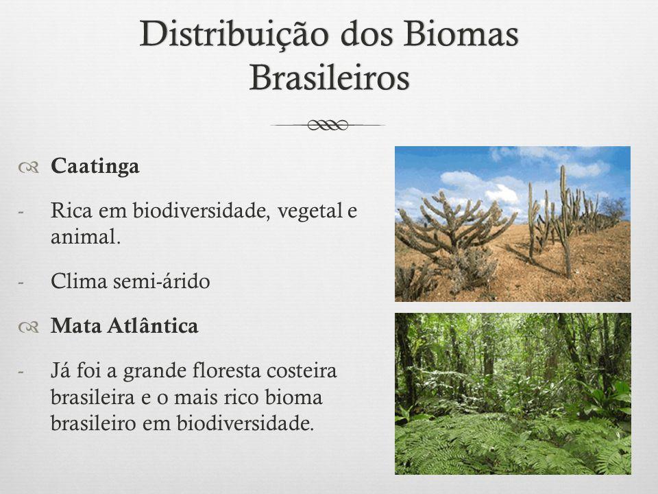 Distribuição dos Biomas Brasileiros  Caatinga -Rica em biodiversidade, vegetal e animal. -Clima semi-árido  Mata Atlântica -Já foi a grande floresta
