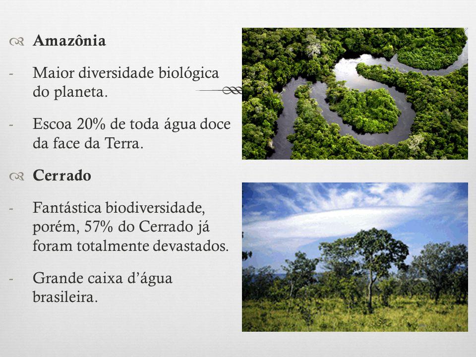  Amazônia -Maior diversidade biológica do planeta. -Escoa 20% de toda água doce da face da Terra.  Cerrado -Fantástica biodiversidade, porém, 57% do