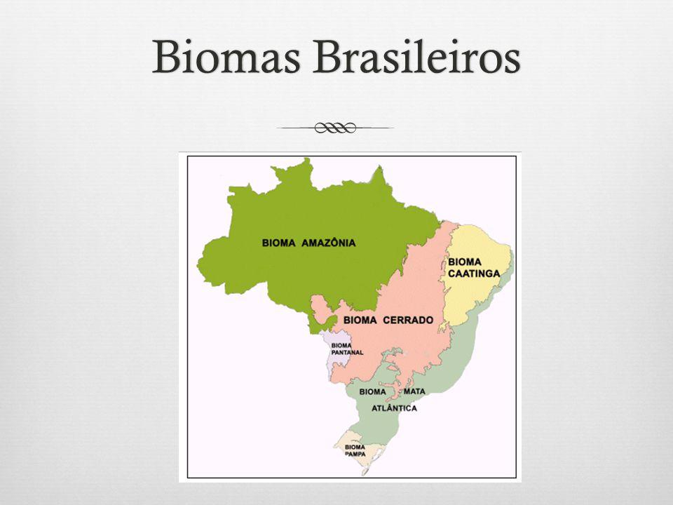 Biomas BrasileirosBiomas Brasileiros