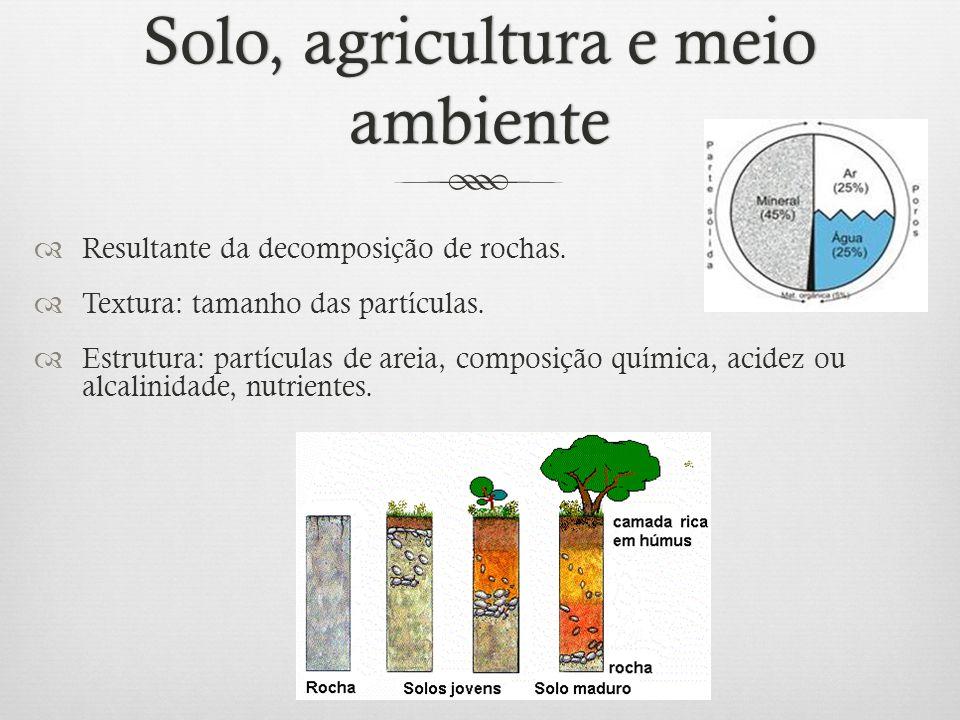 Solo, agricultura e meio ambiente  Resultante da decomposição de rochas.  Textura: tamanho das partículas.  Estrutura: partículas de areia, composi