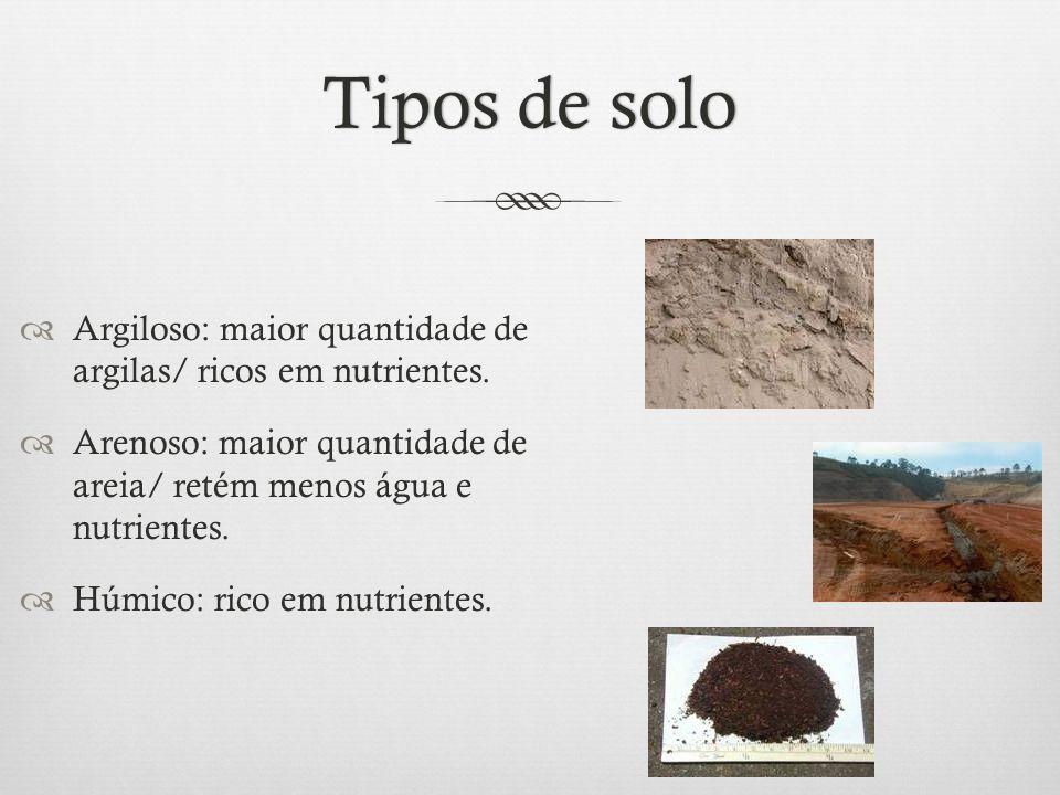 Tipos de soloTipos de solo  Argiloso: maior quantidade de argilas/ ricos em nutrientes.  Arenoso: maior quantidade de areia/ retém menos água e nutr