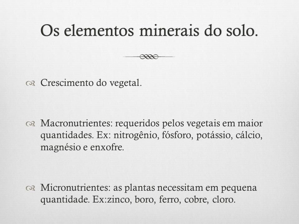 Os elementos minerais do solo.Os elementos minerais do solo.  Crescimento do vegetal.  Macronutrientes: requeridos pelos vegetais em maior quantidad
