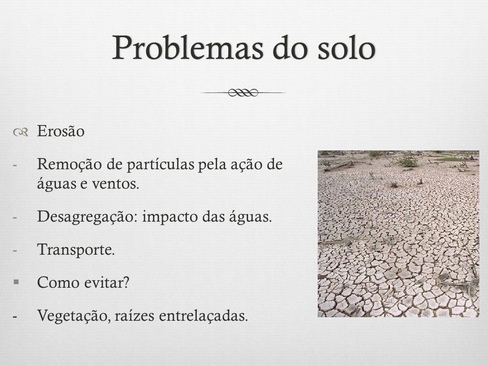 Problemas do soloProblemas do solo  Erosão -Remoção de partículas pela ação de águas e ventos. -Desagregação: impacto das águas. -Transporte.  Como