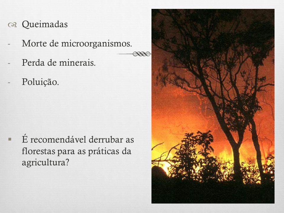  Queimadas -Morte de microorganismos. -Perda de minerais. -Poluição.  É recomendável derrubar as florestas para as práticas da agricultura?
