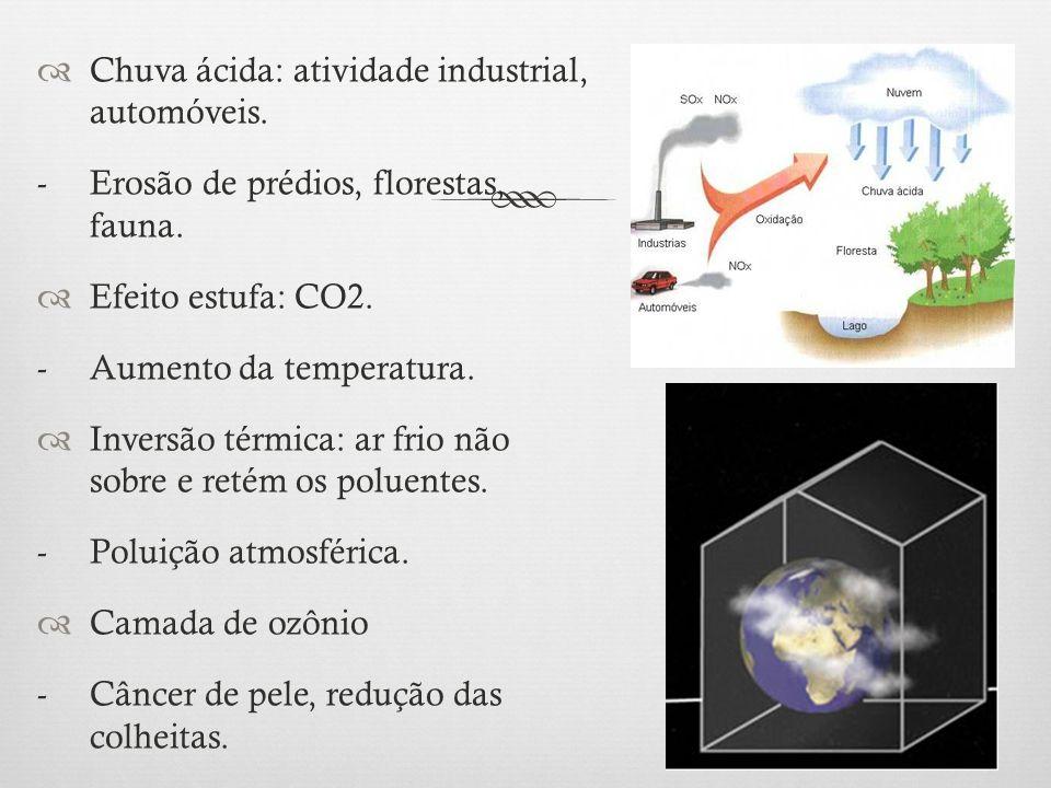  Chuva ácida: atividade industrial, automóveis. - Erosão de prédios, florestas, fauna.  Efeito estufa: CO2. - Aumento da temperatura.  Inversão tér