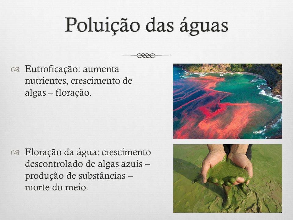 Poluição das águasPoluição das águas  Eutroficação: aumenta nutrientes, crescimento de algas – floração.  Floração da água: crescimento descontrolad