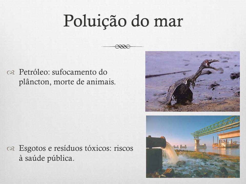 Poluição do marPoluição do mar  Petróleo: sufocamento do plâncton, morte de animais.  Esgotos e resíduos tóxicos: riscos à saúde pública.