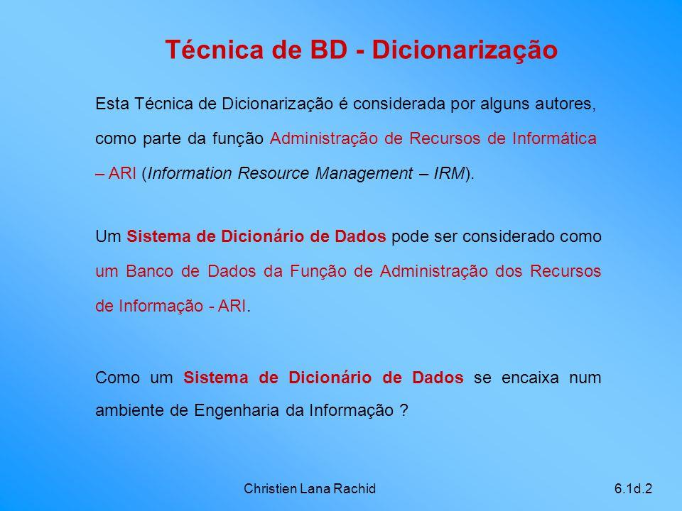 Christien Lana Rachid6.1d.2 Técnica de BD - Dicionarização Um Sistema de Dicionário de Dados pode ser considerado como um Banco de Dados da Função de