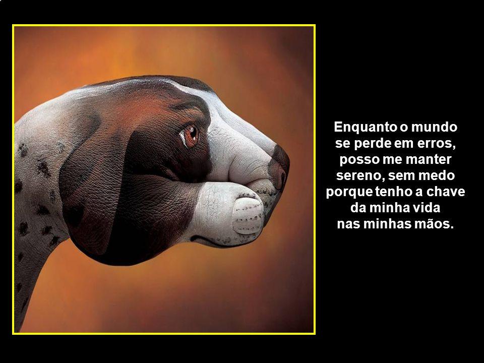 adao-las@ig.com.br Enquanto o mundo se perde em erros, posso me manter sereno, sem medo porque tenho a chave da minha vida nas minhas mãos.
