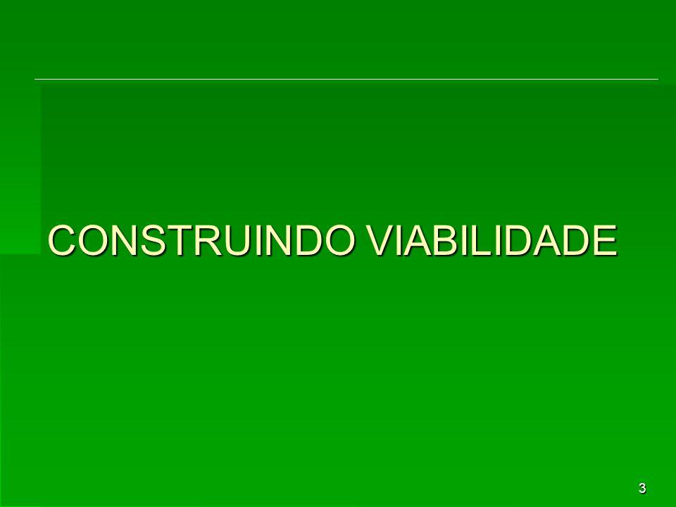3 CONSTRUINDO VIABILIDADE