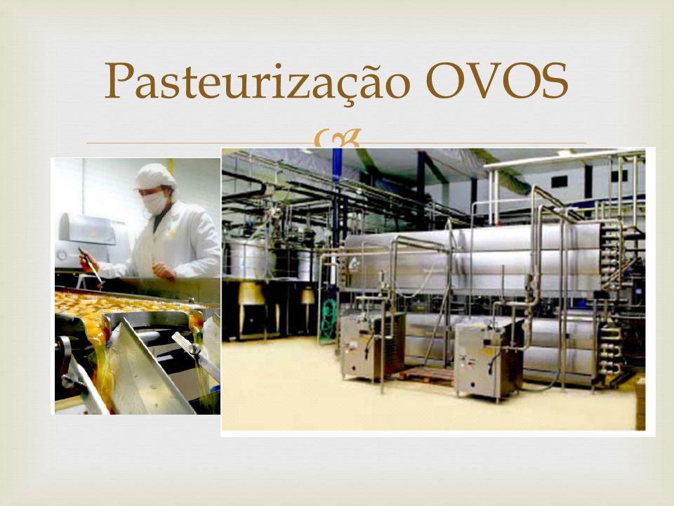  Pasteurização OVOS