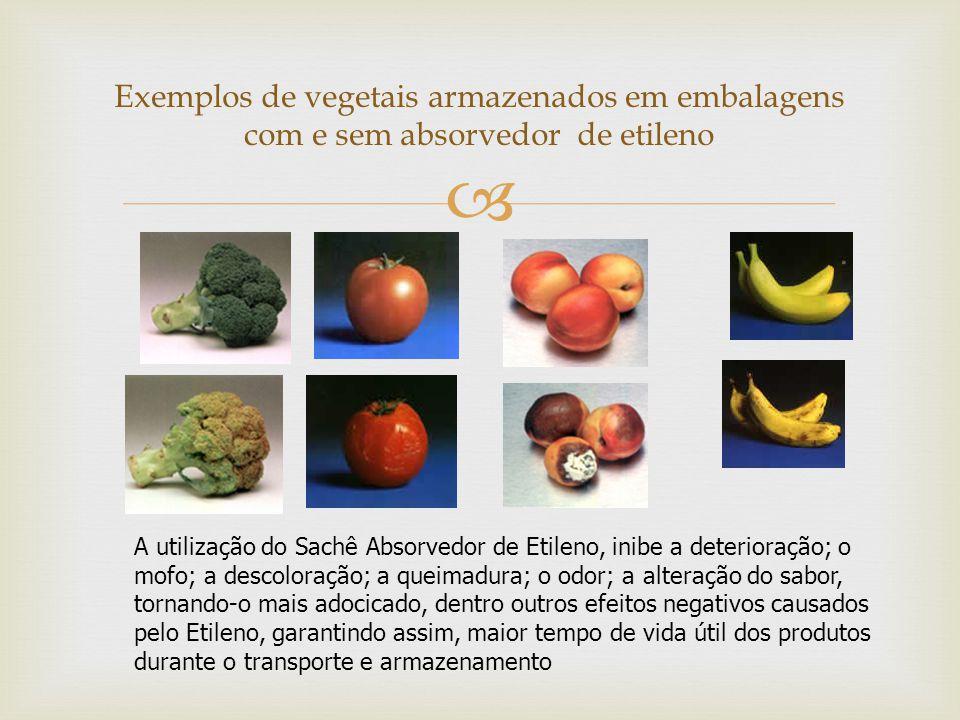   A embalagem comestível é um composto de amido de mandioca e açúcares Embalagens ativas comestíveis ingredientes naturais à embalagem comestível, como pimenta, canela e extrato de própolis.