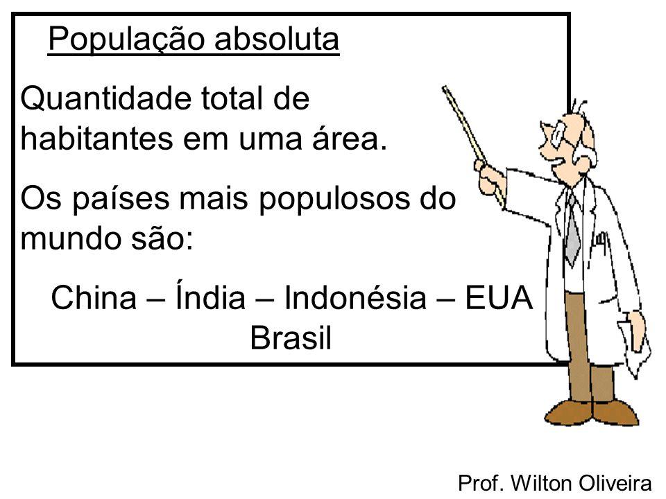 População absoluta Quantidade total de habitantes em uma área. Os países mais populosos do mundo são: China – Índia – Indonésia – EUA Brasil