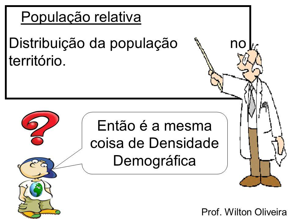 Prof. Wilton Oliveira População relativa Distribuição da população no território. Então é a mesma coisa de Densidade Demográfica