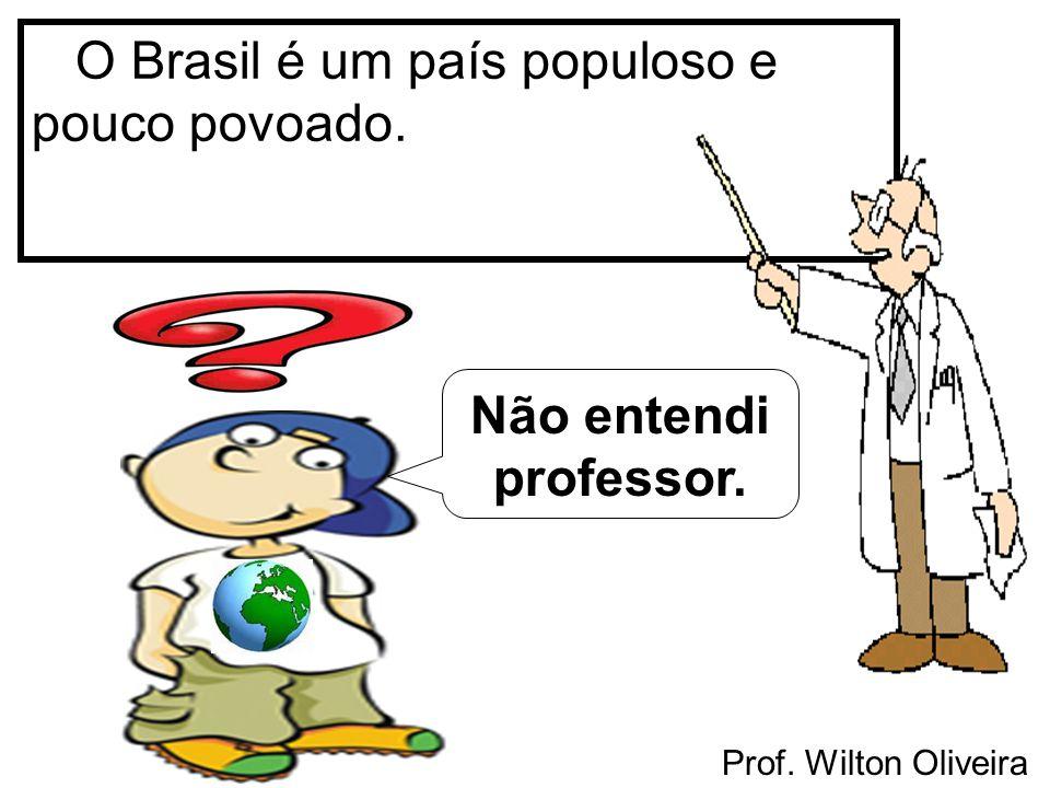 Prof. Wilton Oliveira O Brasil é um país populoso e pouco povoado. Não entendi professor.