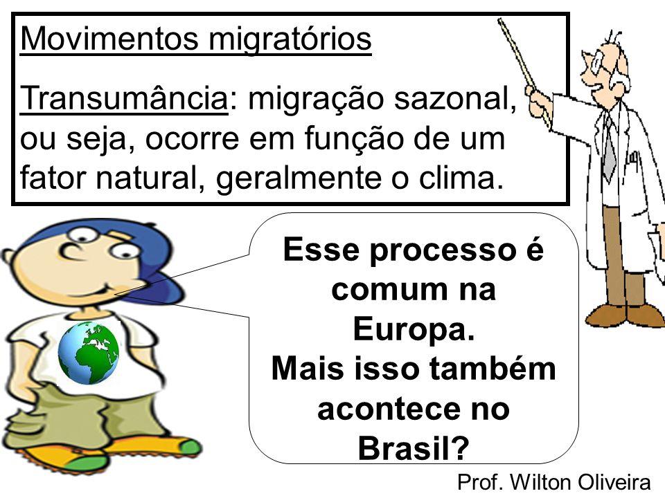 Prof. Wilton Oliveira Movimentos migratórios Transumância: migração sazonal, ou seja, ocorre em função de um fator natural, geralmente o clima. Esse p