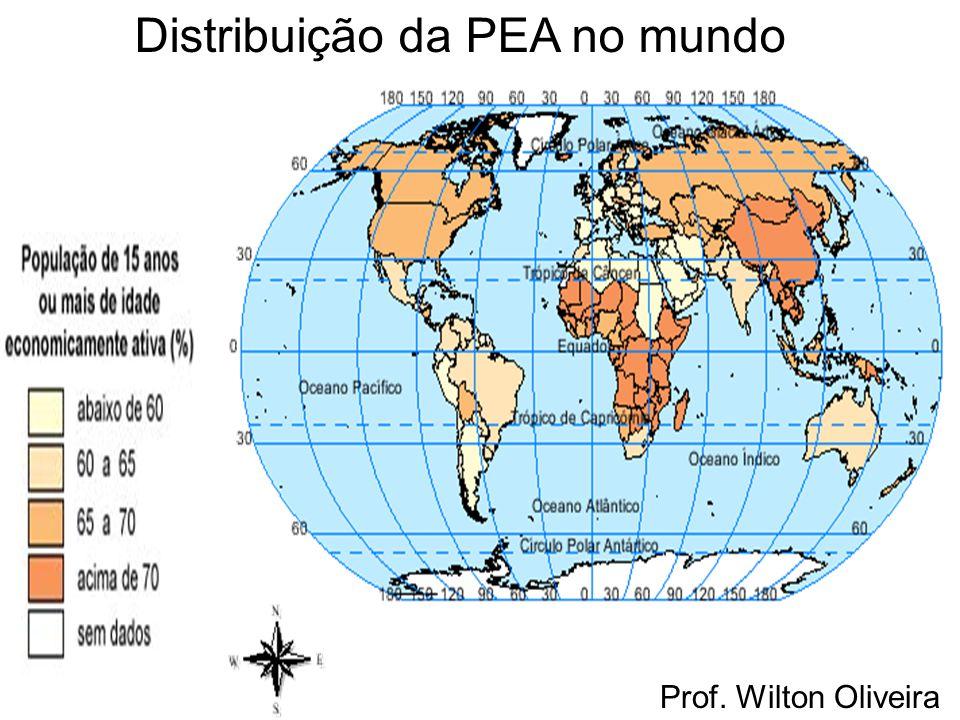 Prof. Wilton Oliveira Distribuição da PEA no mundo